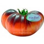 Tomates Con Sabor