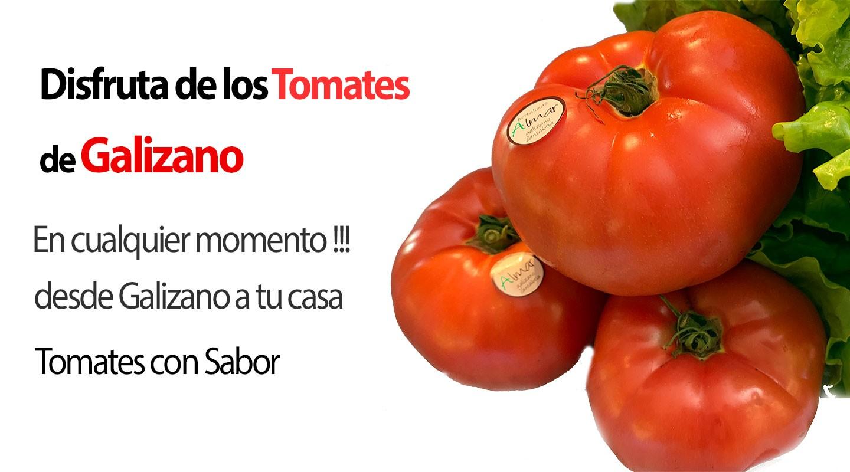 Solo Tomate con Sabor a Tomate